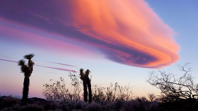 Beauty in Rugged Western Documentary