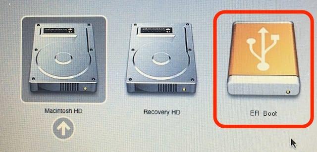 Select the EFI Boot icon, then press Return