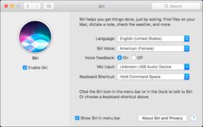 Setting up Siri