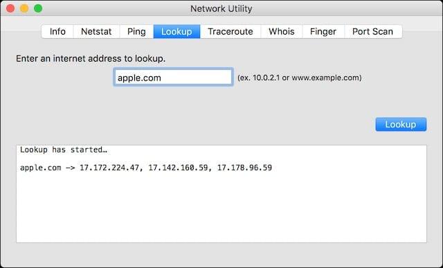 Network Utility - Lookup
