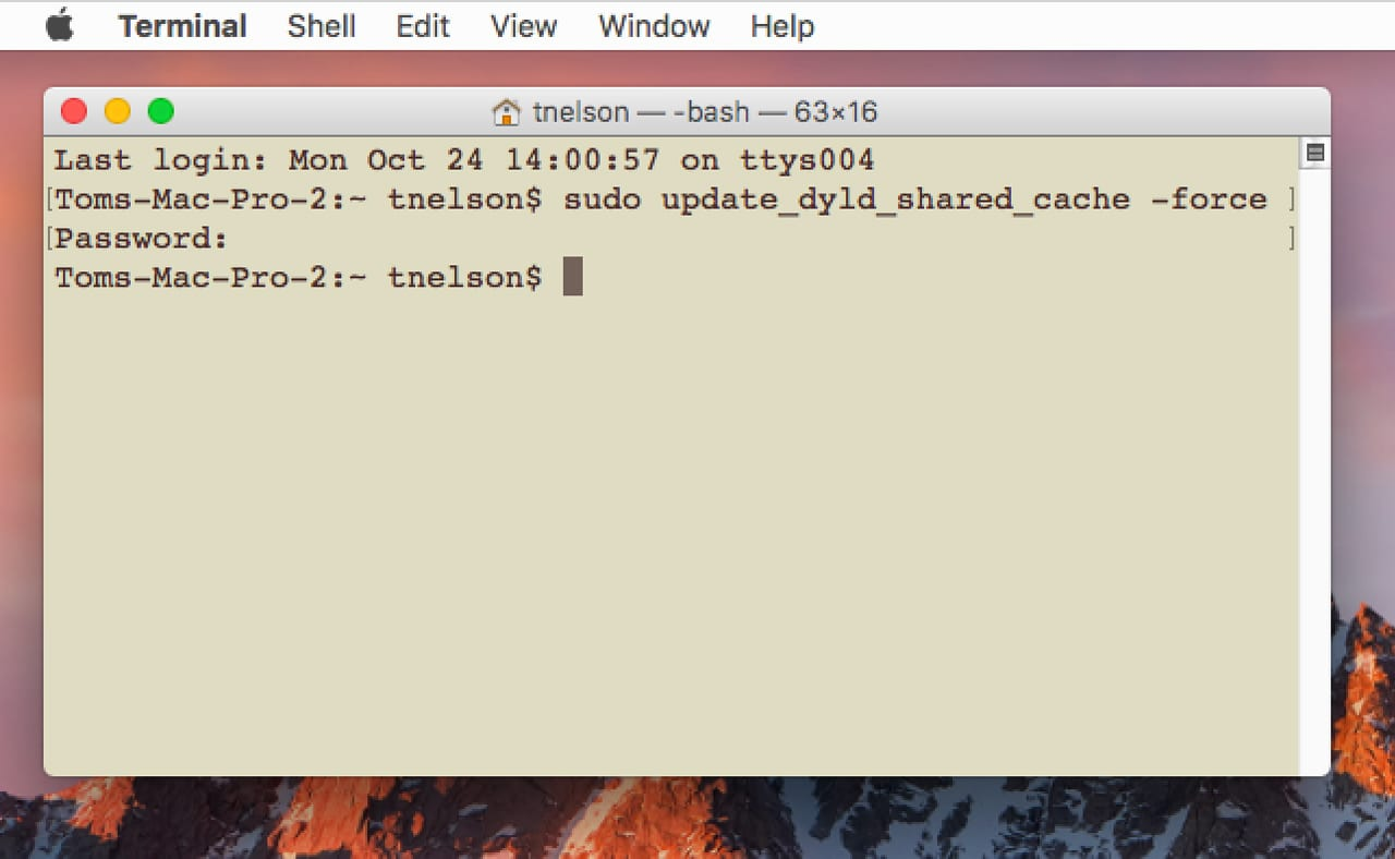 (Use Terminal to replace a corrupt dynamic link cache.)