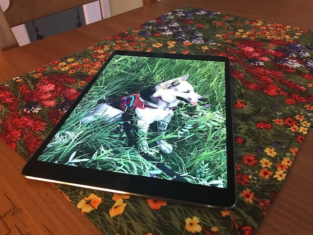 The compact, colorful and speedy 10.5-inch iPad Pro