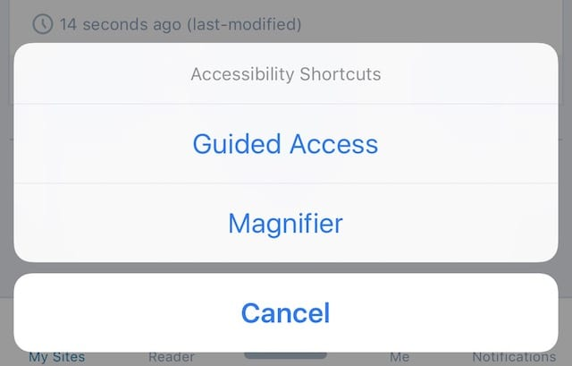 After triple-clicking, Guided Access and Magnifier are your choices... as is canceling.