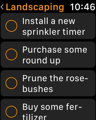 The list on an Apple Watch screen
