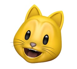 Your author, as a cat. Animoji are fun and popular.