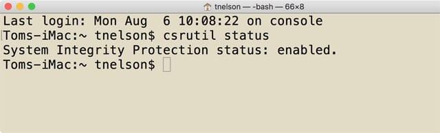 Terminal showing csrutil command