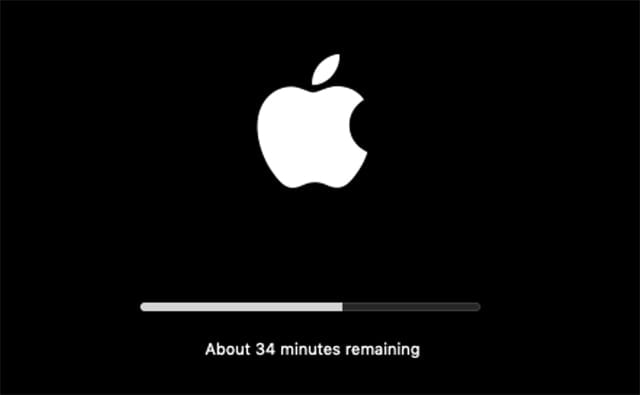 Mac Mojave installation progress bar.