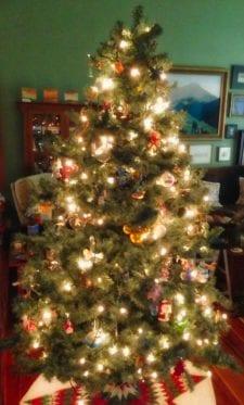 Christmas Tree. Photo ©2012, Steven Sande