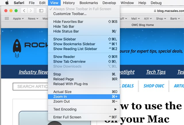 Safari's View menu.