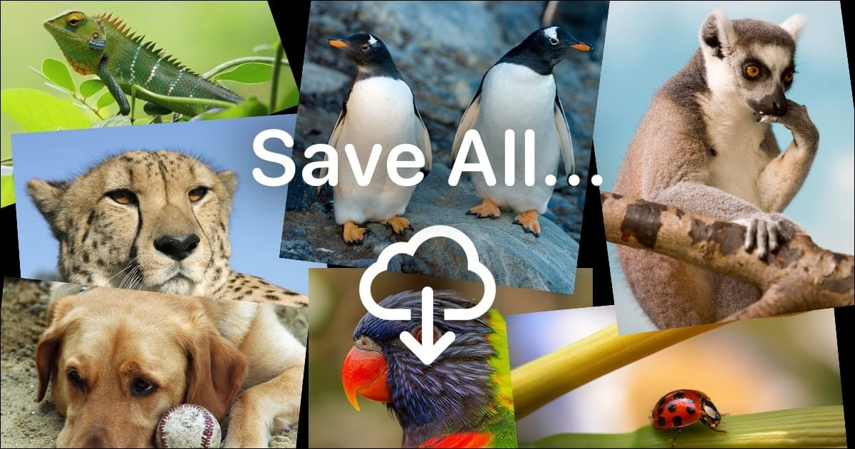 """animal mosaic with words """"save all"""" and a download arrow"""