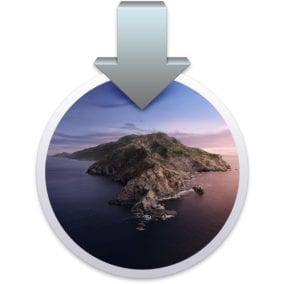 macOS Catalina install icon.