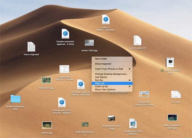 Use the hidden Mess Up Desktop menu item to create chaos on your desktop