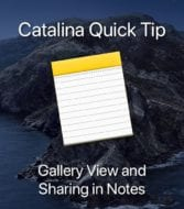 Mac Notes icon on catalina island