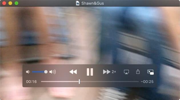 Screenshot of PIP example from safari showing Shawn & Gus