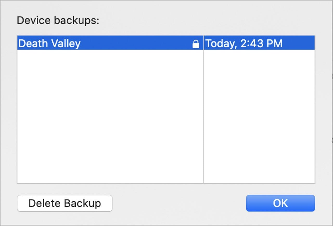 A list of backups appears. To delete one, click on it to select the backup, then click the Delete Backup button.