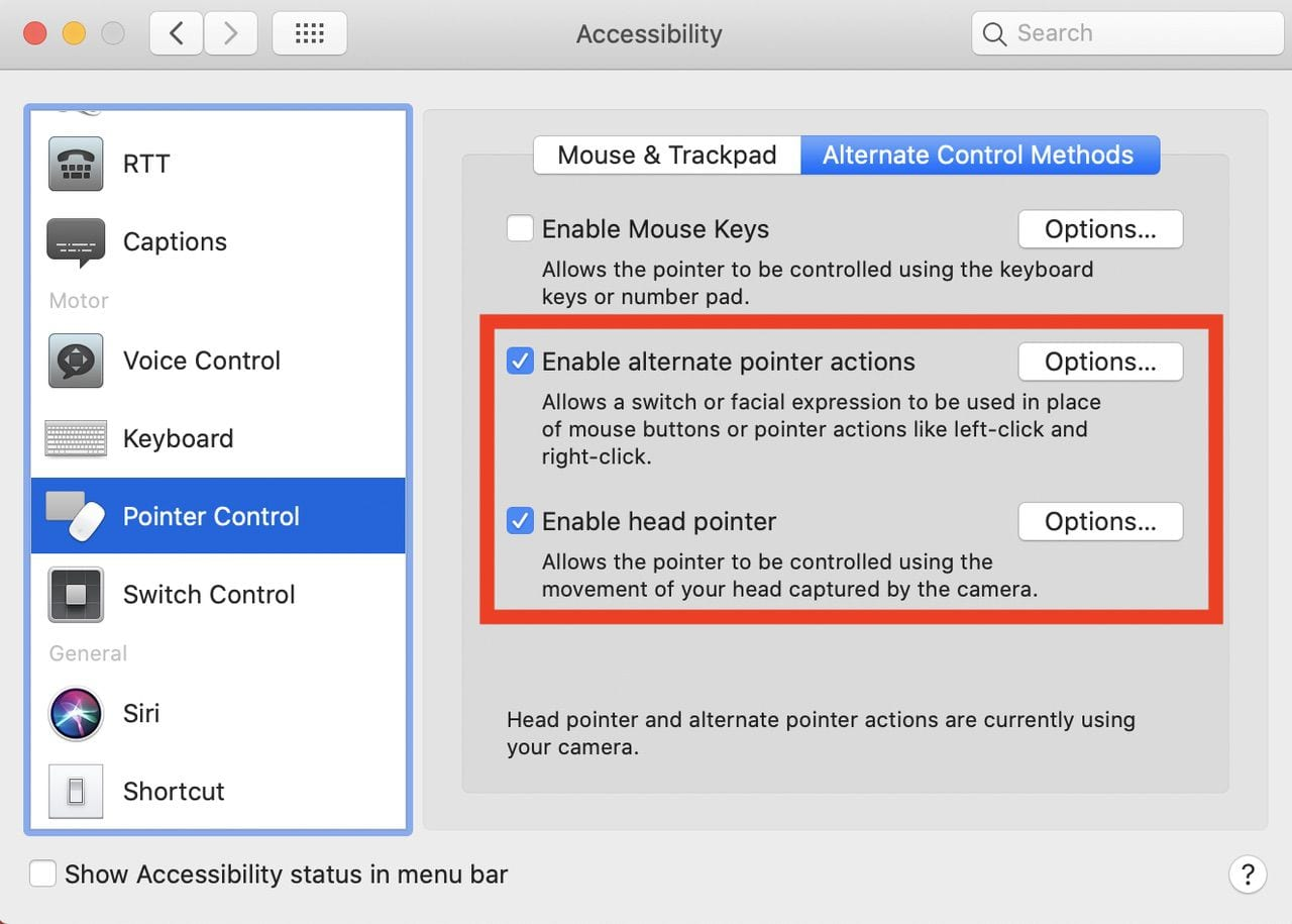 Click these two checkboxes to enable the head pointer capability and enable alternate pointer actions.