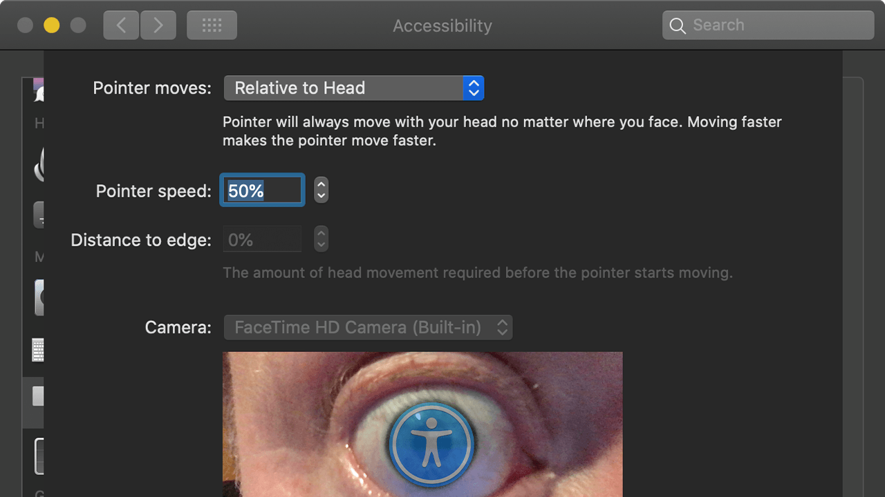 Eye with accessibility logo
