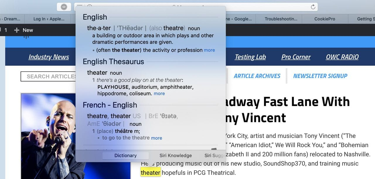 Look up a word on a Safari web page using the dictionary