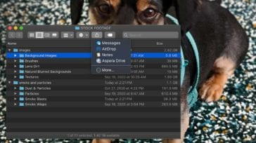 macOS Finder window showing share menu - dog wallpaper