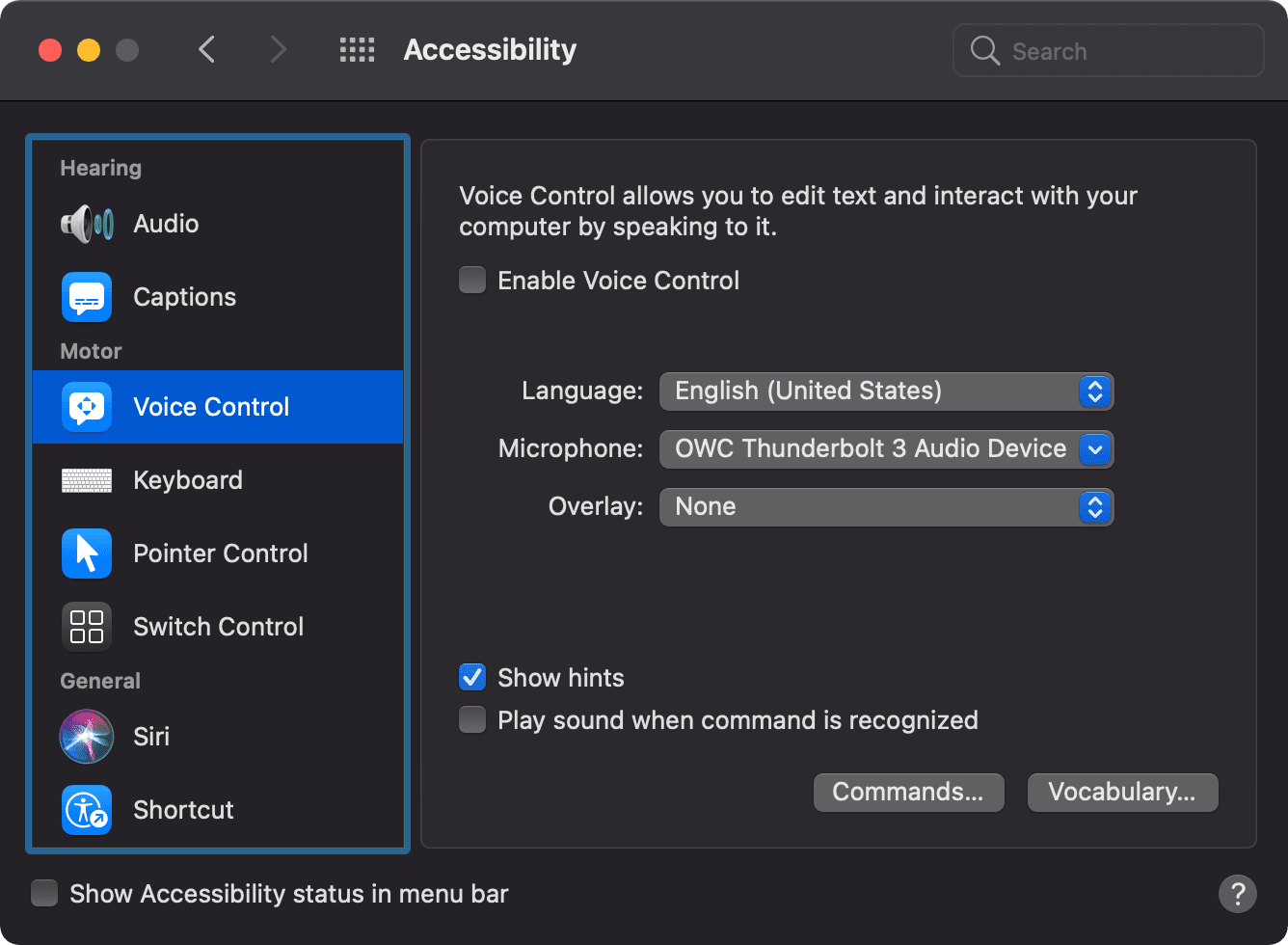 Voice Control settings in macos