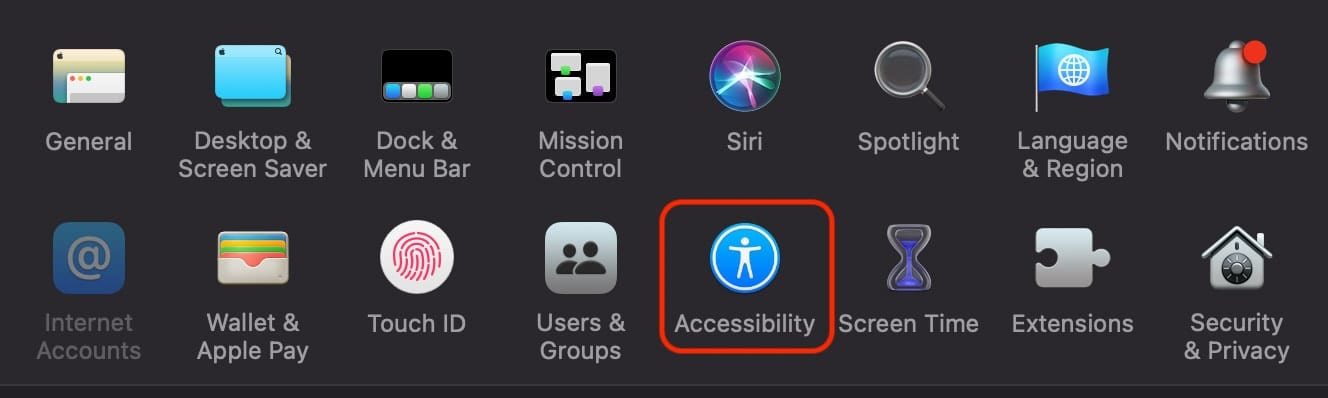 Accessibility option in macOS system preferences