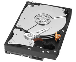 Western Digital 3.5″ Hard Disk Drive